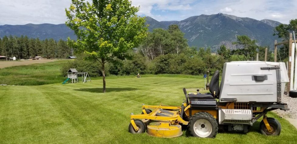 Lawn Maintenance In Columbia Falls