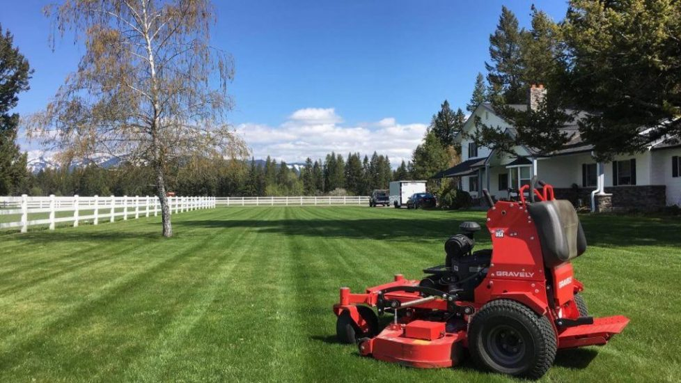 Weed Control Services In Columbia Falls