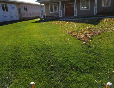 prepare lawn to winter. fall cleaning