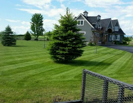 Spring Lawn Care Services In Columbia Falls